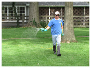 Lawn Services Page